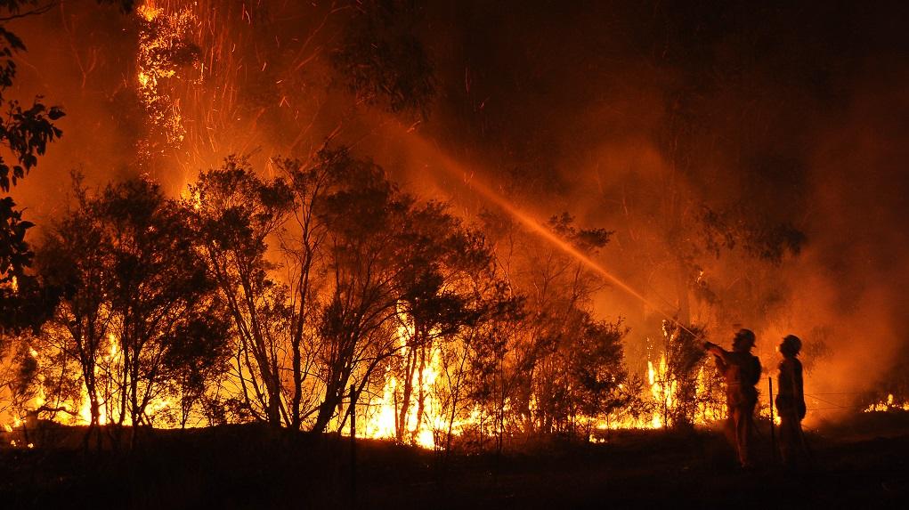Cessnock Bush Fire 18-01-2013, photo: Quarrie Photography