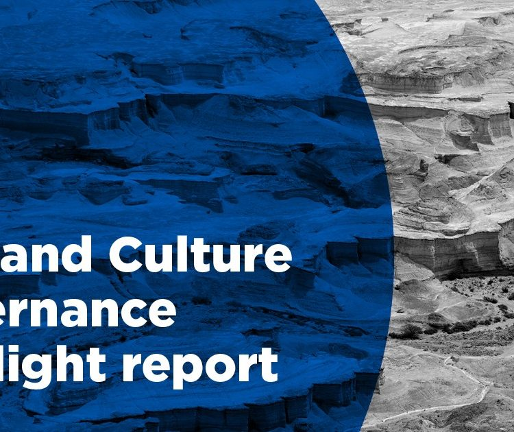 Arts and Culture Governance Spotlight Report
